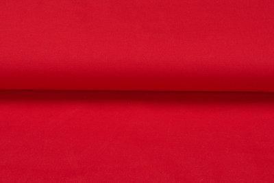 Canvas Uni rot