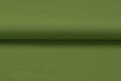 Canvas Uni grün